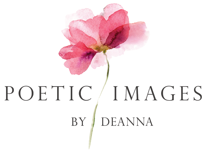 Poetic Images by Deanna wedding photographer
